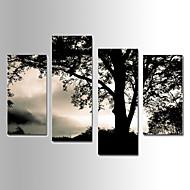 Landschap Canvas Afdrukken Vier panelen Klaar te hangen,elke vorm