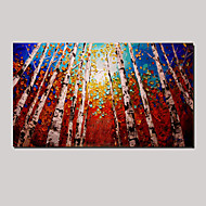 Hand-painted Oil Paintings Modern Landscape with Stretched Framed