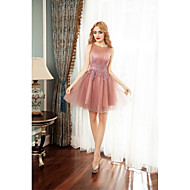 Cocktail Party Dress Ball Gown Jewel Short / Mini Tulle with Appliques