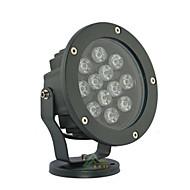 LED High Power 12W  Cool/Natural/Warm White Flood Light AC85-265V