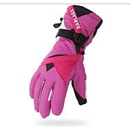 スキー手袋 フルフィンガー 女性用 スポーツグローブ 保温 防風 耐摩耗性 スキー サイクリング/バイク キャンピング&ハイキング モーターバイク 綿繊維 冬