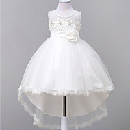 Ball Gown Court Train Flower Girl Dress - Lace / Organza Sleeveless Jewel with Appliques / Bow(s) / Lace