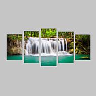 Photographic Print Canvas Set Canvas Ispis Pejzaž Photographic Realism Putovanje Slobodno vrijeme Botanički Pet ploha Horizontalan Print