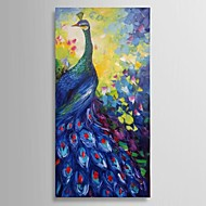 Hand-Painted Abstract Peacock Wall Art Oil Painting For Home Decoration Ready to Hang