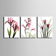 Płótno Set Kwiatowy/Roślinny Fason europejski,Trzy panele Płótno Pionowe Art Print wall Decor For Dekoracja domowa