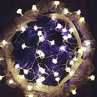 100 בראשות ורדים 10m להדליק אור קישוט חג המולד חיצונית עמיד למים תקע הוביל אור מחרוזת