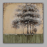 Ručno oslikana Sažetak / Cvjetni / Botanički ulja na platnu,Moderna / Klasika Jedna ploha Platno Hang oslikana uljanim bojama For Početna