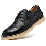 Men's Oxfords Fall Winter Other Bullock shoes Cowhide Casual Flat Heel Lace-up Black Brown Other