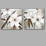Peint à la main Abstrait / A fleurs/Botanique Peintures à l'huile,Modern / Classique Deux Panneaux Toile Peinture à l'huile Hang-peintFor