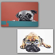 Hand-Painted Abstract / Animals Dogs 100% Hang-Painted Oil PaintingModern / Classic Two Panels Canvas Oil Painting For Home Decoration
