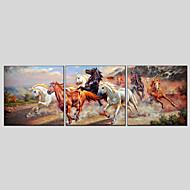 Ručně malované Abstraktní Zvíře Olejomalby + tisky,Klasický Moderní Tři panely Plátno Hang-malované olejomalba For Home dekorace