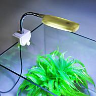 Akvarij LED osvijetljenje Bijelo Energy Saving LED žarulje 220V