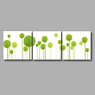 Sträckt Canvastryck Blommig/Botanisk Moderna,Tre paneler Kanvas Horisontell Målning väggdekor For Hem-dekoration