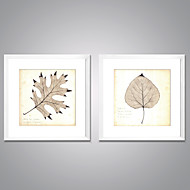 Impresiones  Enmarcadas En Lienzo Naturaleza muerta Floral/Botánico Modern Realismo,Dos Paneles Lienzos Cuadrado láminaDecoración de