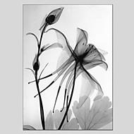 Kézzel festett Virágos / Botanikus Függőleges Panorámás,Klasszikus Modern Egy elem Vászon Hang festett olajfestmény For lakberendezési