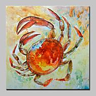 Pintados à mão Animal Abstracto Modern 1 Painel Tela Pintura a Óleo For Decoração para casa
