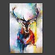 Maalattu Eläin Taiteellinen Abstrakti Tyylikäs 1 paneeli Kanvas Hang-Painted öljymaalaus For Kodinsisustus