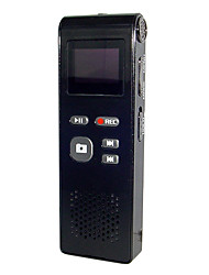 Mini DV and Digital Voice Recorder and MP3 Player (OLED Screen, 2GB)
