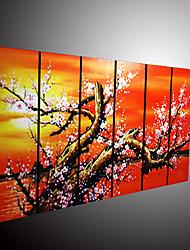 met de hand geschilderde bloemen olieverf met gestrekte frame - set van 6