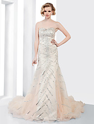 Formal Evening Dress - Champagne Plus Sizes Trumpet/Mermaid Strapless/Sweetheart Court Train Organza