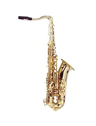 hanbang - (HB-8008) sassofono tenore con custodia morbida (fino a F # acuto)