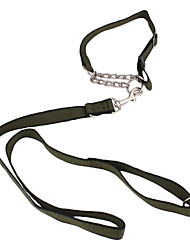 Durable Dog Leash with Collar (120cm/47inch)