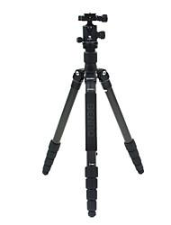 Benro Camera Tripod Kit C2691TB1