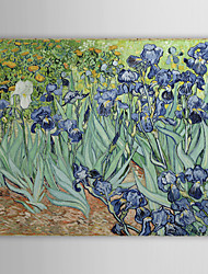 Famosas Pintura a óleo Íris por Van Gogh