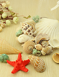 Wedding Décor Nice Ocean Shell  Decoration