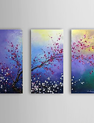 Hand Painted Oil Painting Floral Blossom Plum Set of 3 with Stretched Frame 1307-FL0189