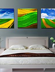 Reproduction transférée sur toile Art paysage coloré Montagne Set de 3