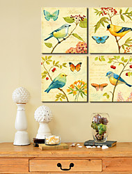 Stretched Canvas Art Animal Birds and Butterfly Set of 4