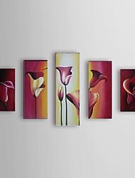 handgeschilderde olieverf bloemen calla set van 5 met gestrekte kader 1307-fl0184