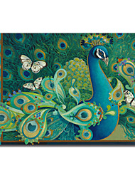 Stretched Canvas Art Paisley Animal Peacock by David Galchutt