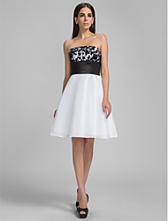 Cocktail Party / Graduation / Holiday / Homecoming Dress - White Plus Sizes / Petite A-line Strapless Knee-length Taffeta
