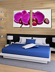 Stretched Canvas Art Floral Purple Orchid Hug Set of 2
