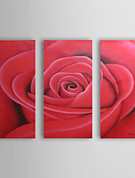 Hand Painted Oil Painting Floral Beauty of Red Rose with Stretched Frame Set of 3 1308-FL0760