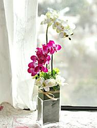 """22 """"H Artistique Arrangement orchidée dans vase en verre"""