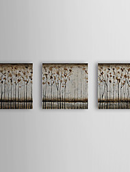 Handgemaltes Ölgemälde Botanik Bäume mit gestrecktem Frame Set von 3 1309C-FL0831