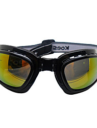 Negro Gafas de esquí plegables