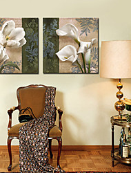 Stretched Canvas Art Floral Talking with each other Set of 2