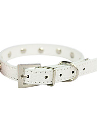 Dog Collar Rivet / Studded Red / Black / White / Green / Purple PU Leather
