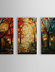 Hand Painted Oil Painting Landscape Woods with Stretched Frame Set of 3 1310-LA1185