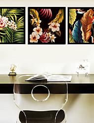 A fleurs/Botanique Toile Encadrée / Set de Cadres Wall Art,PVC Noir Sans Passepartout Avec Cadre Wall Art