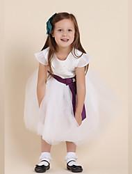 Pequeña Princesa vestido de la muchacha