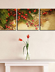 Stretched Canvas Print Art Branch of Christmas Tree Set of 3