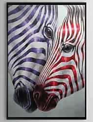 Zebra flash animaux encadrée peinture à l'huile