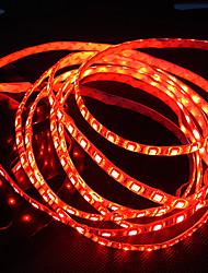 RGB LED Streifen-Licht imprägniern 5M SMD 5050 300 LEDs / Rolle + 44 Tasten IR-Fernbedienung