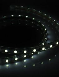 PCB Waterprooft 1M 60x5050SMD 9W 650-710lm Белый свет Светодиодные полосы света с разъемом (220-240V)