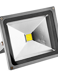 Scheinwerfer Kühlweiß , Sensor 30 W